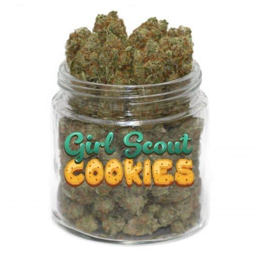 buy gsc strain online