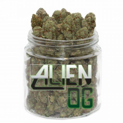 buy alien og strain online