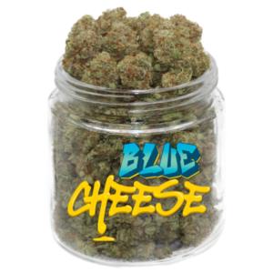 buy blue cheese strain online