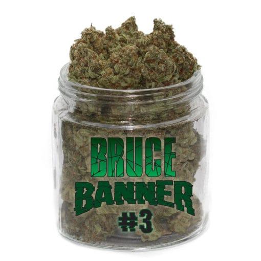 buy bruce banner strain online
