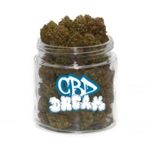 buy cbd dream strain online