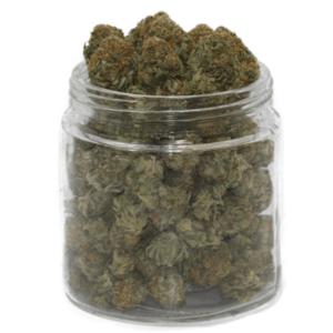 buy chemdawg strain online