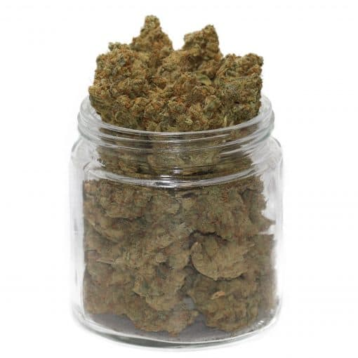 buy do-si-dos strain online