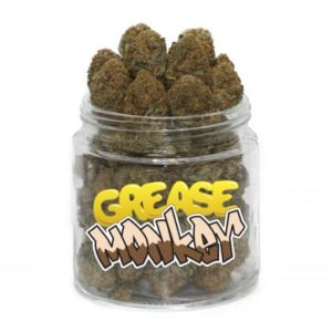 buy grease monkey strain online