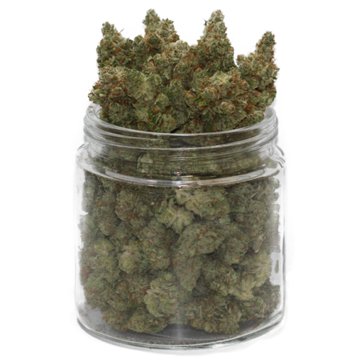 scout master strain online