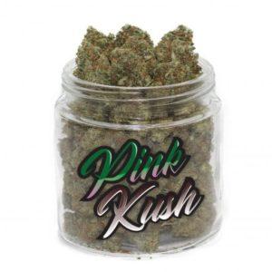 buy pink kush strain online