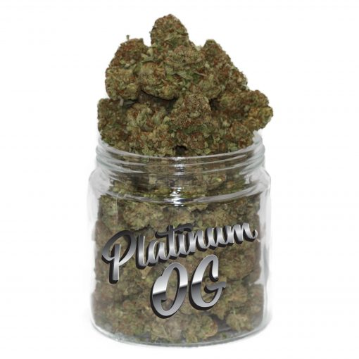 platinum og strain