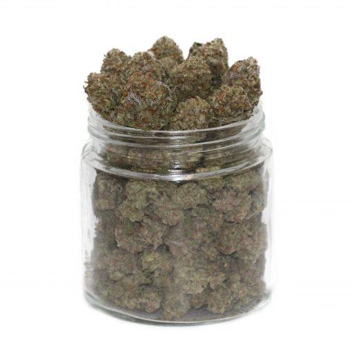 buy purple urkle strain online