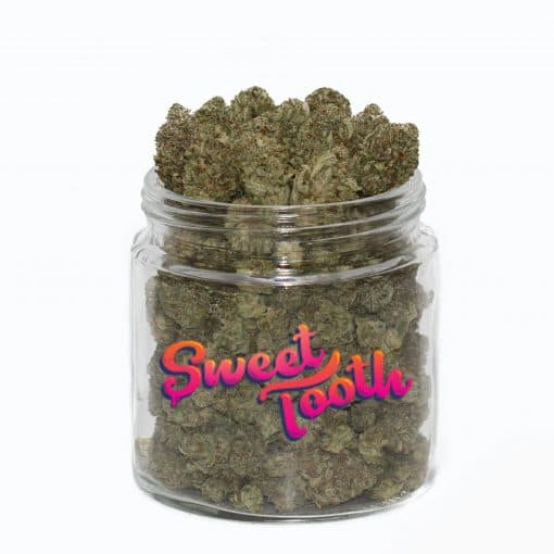 Buy Sweet Tooth Strain Online