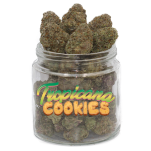 buy tropicana cookies strain