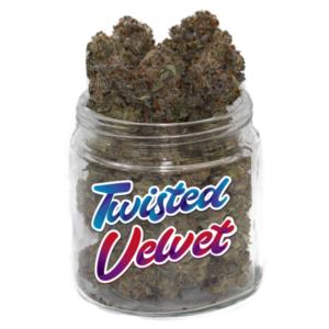 buy twisted velvet strain online